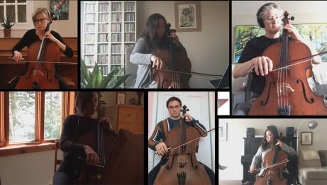 NACO Cello Section