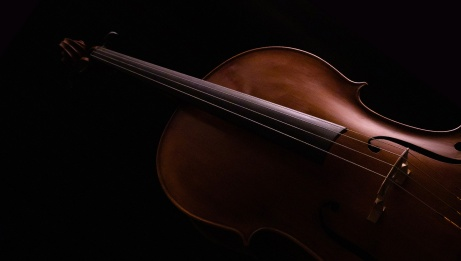 Cello on a black background | Unsplash
